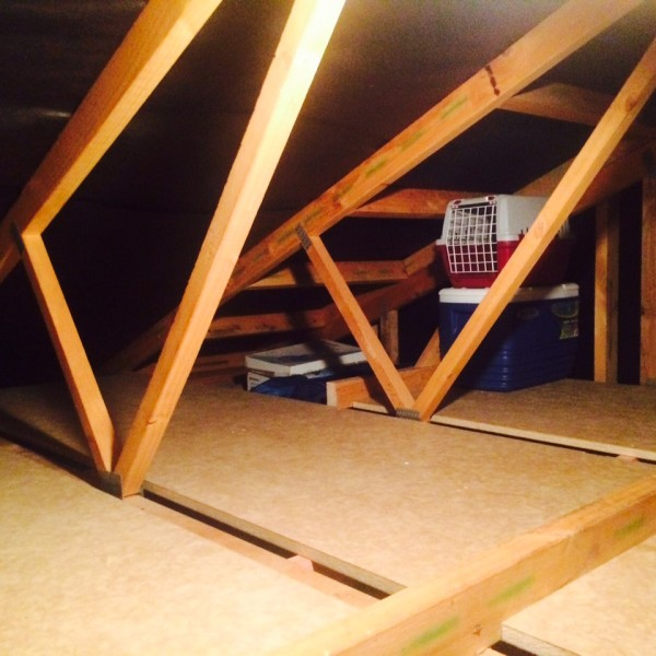attic conversions auckland